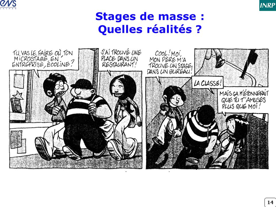 Stages de masse : Quelles réalités