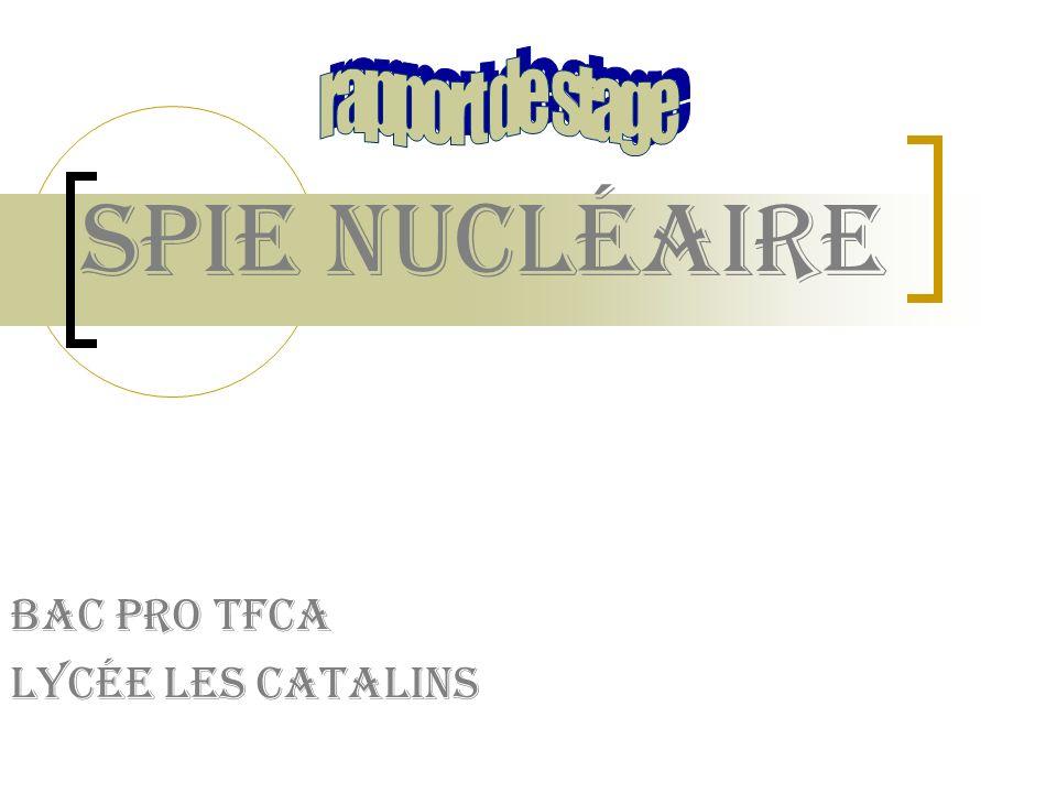 Bac pro TFCA Lycée les catalins