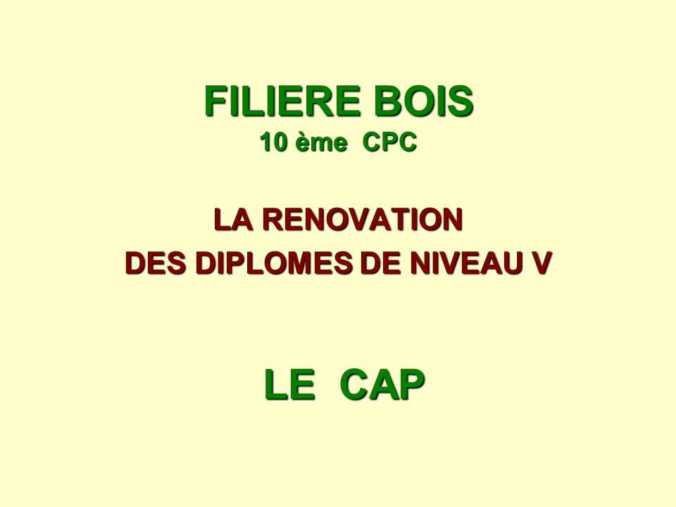 LA RENOVATION DES DIPLOMES DE NIVEAU V