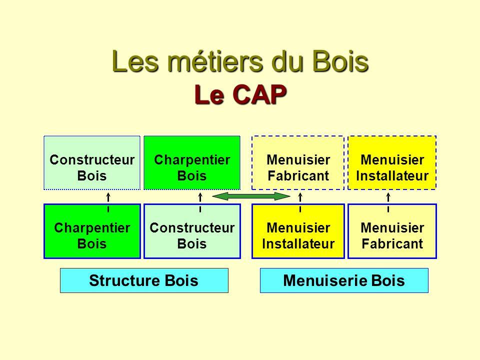Les métiers du Bois Le CAP