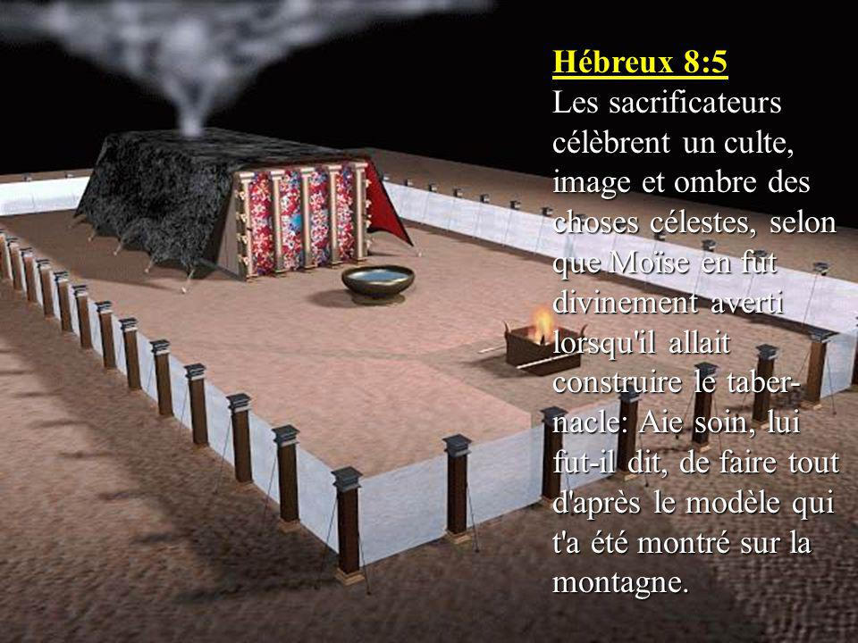 Hébreux 8:5