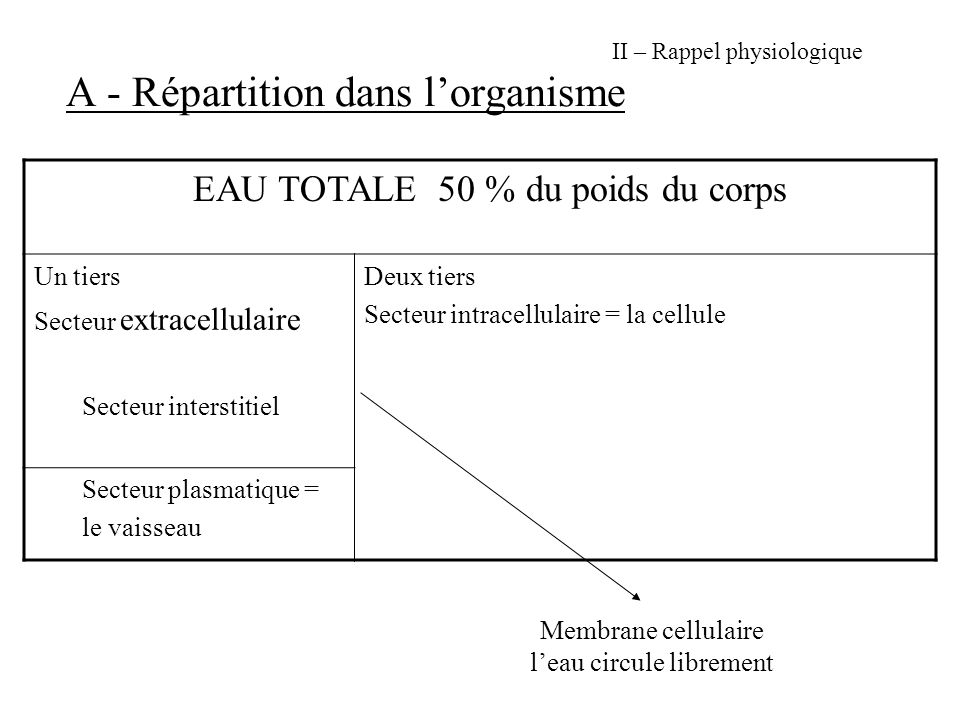 II – Rappel physiologique A - Répartition dans l'organisme
