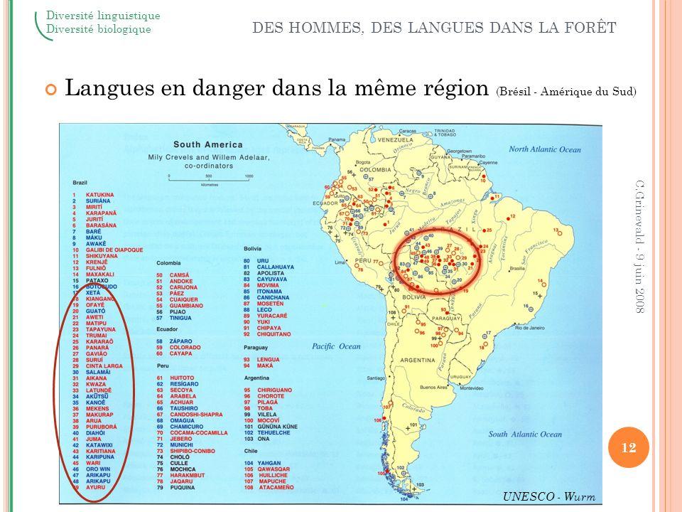 Langues en danger dans la même région (Brésil - Amérique du Sud)
