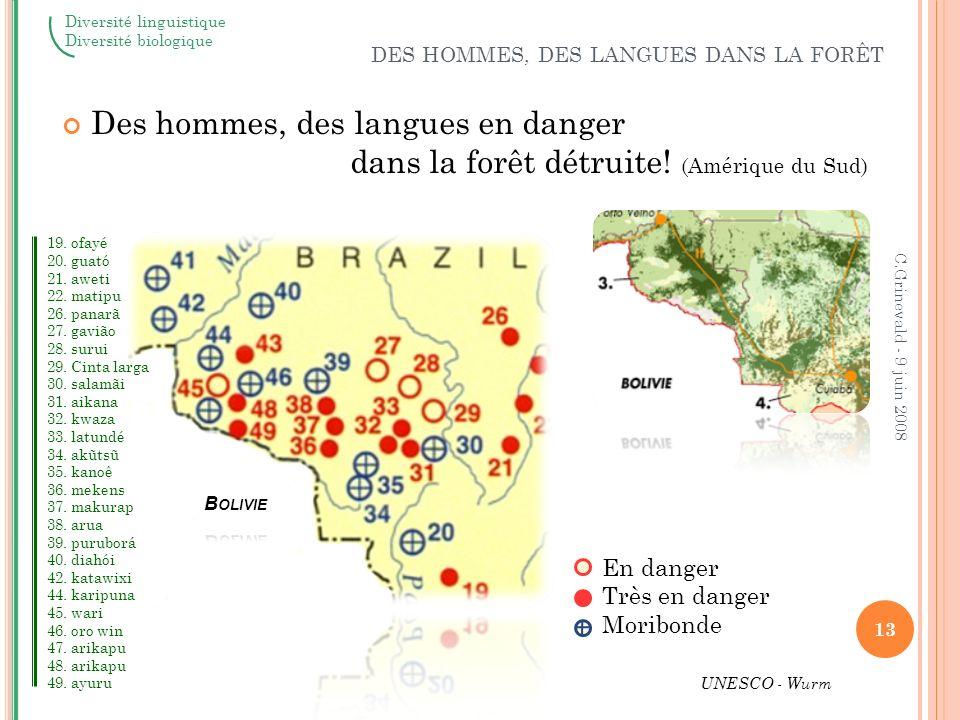 Des hommes, des langues en danger