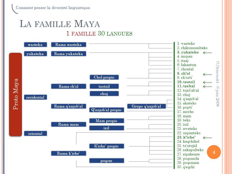 La famille Maya 1 famille 30 langues