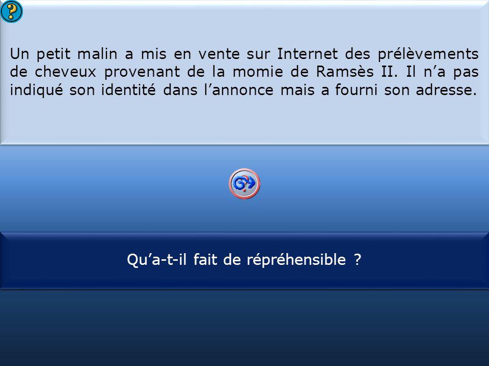 Un petit malin a mis en vente sur Internet des prélèvements de cheveux provenant de la momie de Ramsès II. Il n'a pas indiqué son identité dans l'annonce mais a fourni son adresse.