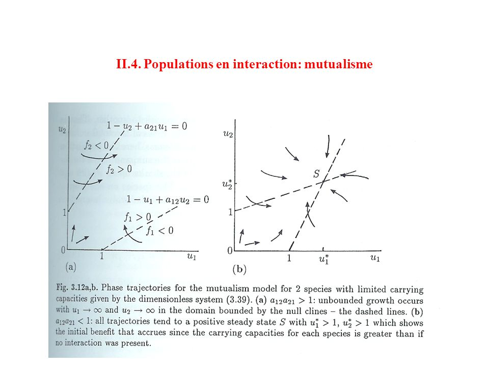 II.4. Populations en interaction: mutualisme
