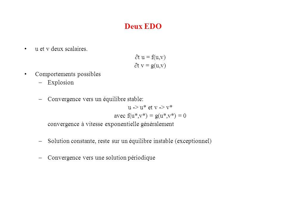 avec f(u*,v*) = g(u*,v*) = 0