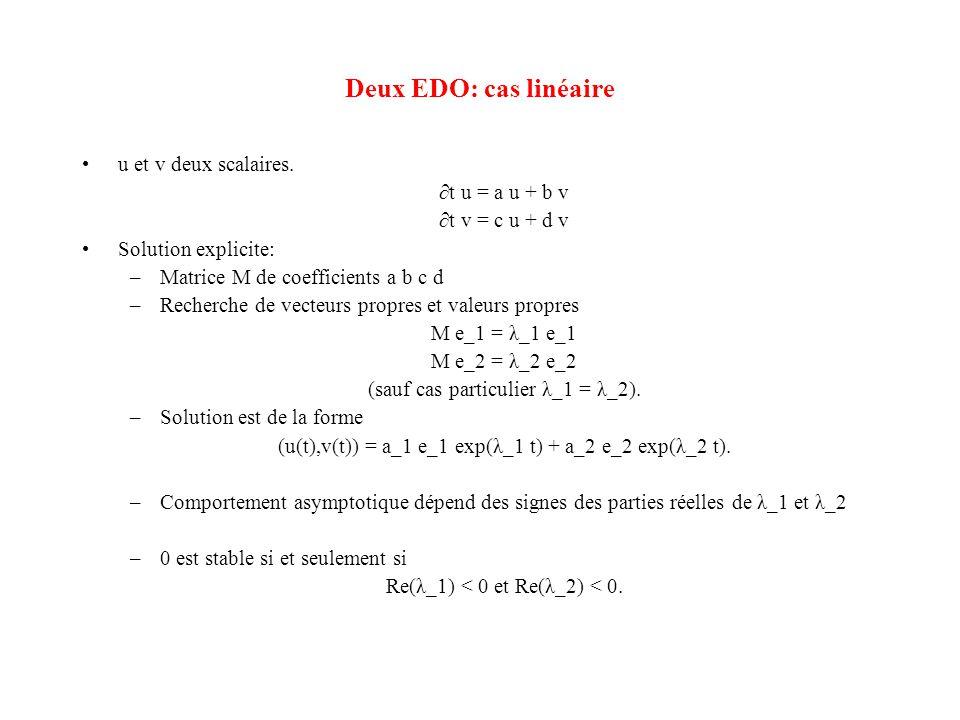 Deux EDO: cas linéaire u et v deux scalaires. ∂t u = a u + b v