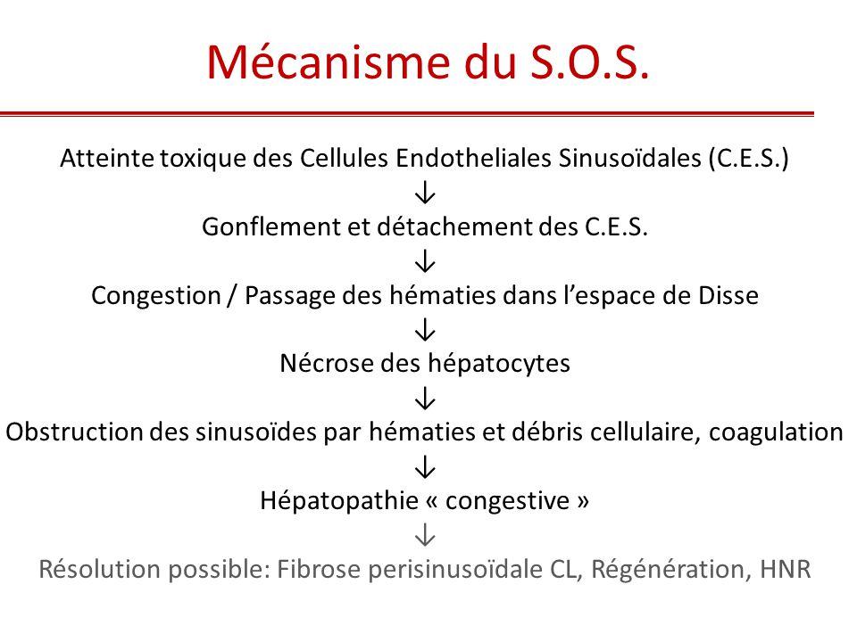Mécanisme du S.O.S. Atteinte toxique des Cellules Endotheliales Sinusoïdales (C.E.S.) ↓ Gonflement et détachement des C.E.S.