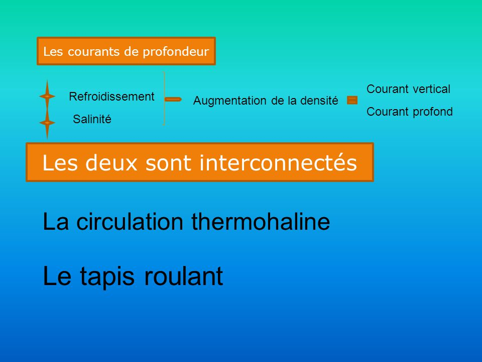 Le tapis roulant La circulation thermohaline