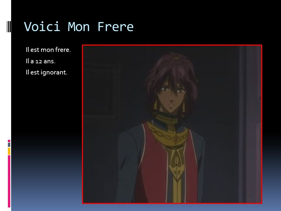 Voici Mon Frere Il est mon frere. Il a 12 ans. Il est ignorant.