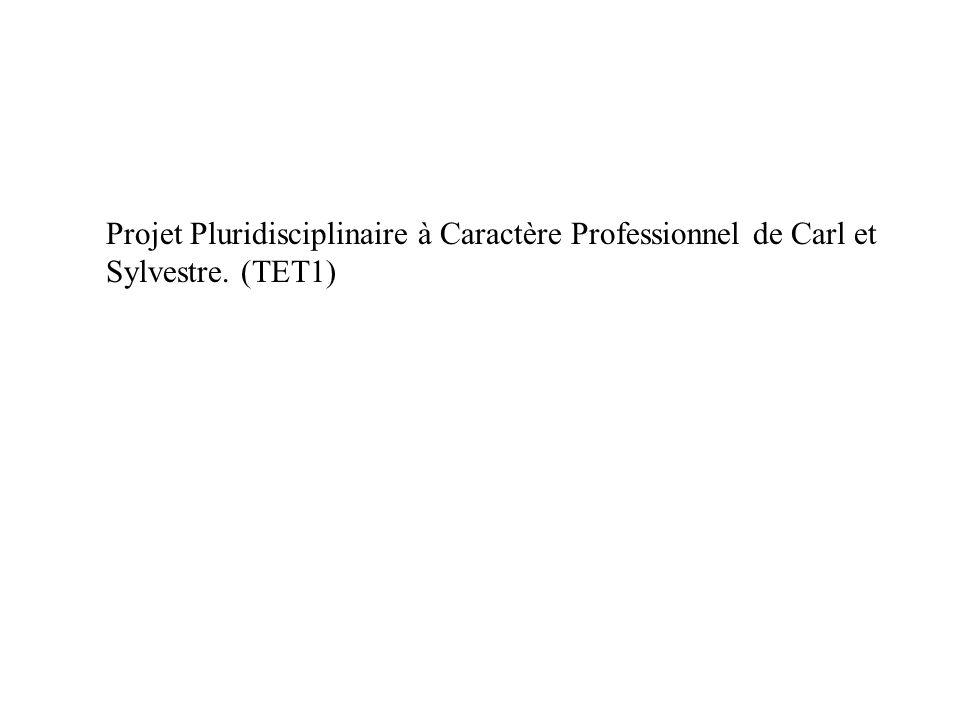 Projet Pluridisciplinaire à Caractère Professionnel de Carl et Sylvestre. (TET1)
