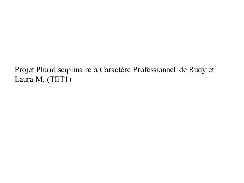 Projet Pluridisciplinaire à Caractère Professionnel de Rudy et Laura M