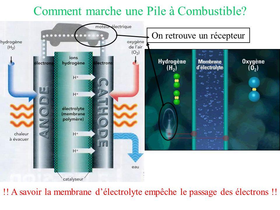 Comment marche une Pile à Combustible
