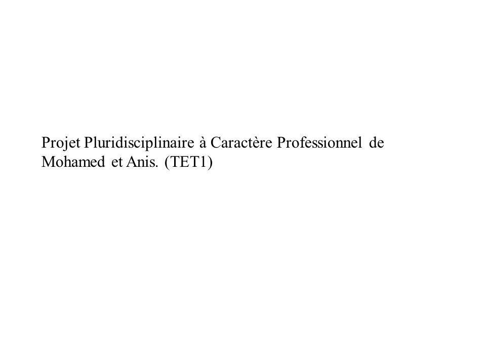 Projet Pluridisciplinaire à Caractère Professionnel de Mohamed et Anis
