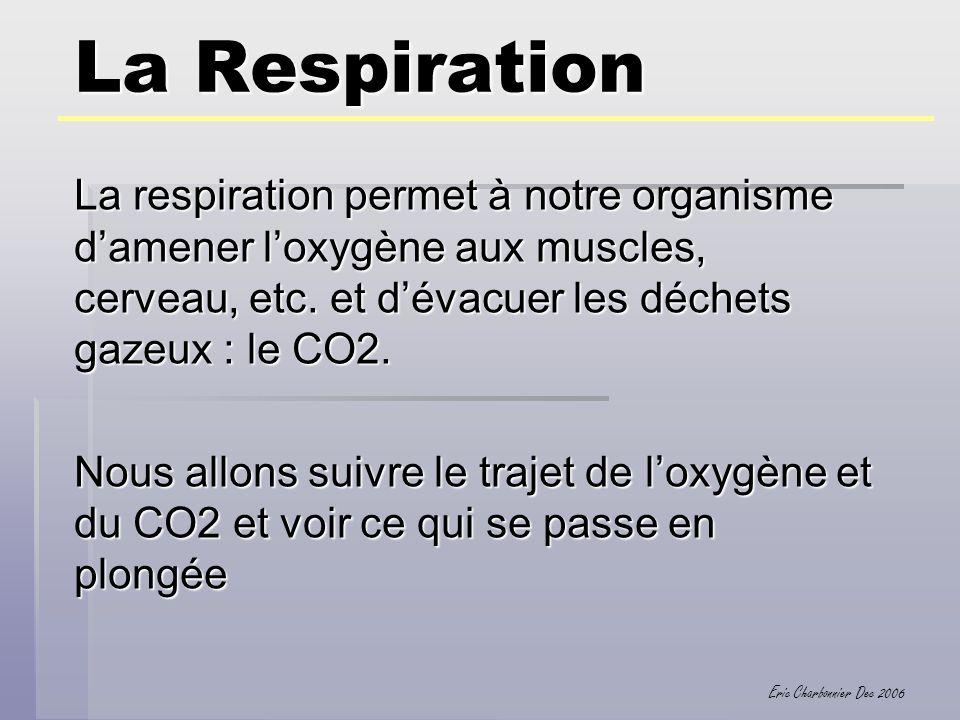 La Respiration La respiration permet à notre organisme d'amener l'oxygène aux muscles, cerveau, etc. et d'évacuer les déchets gazeux : le CO2.