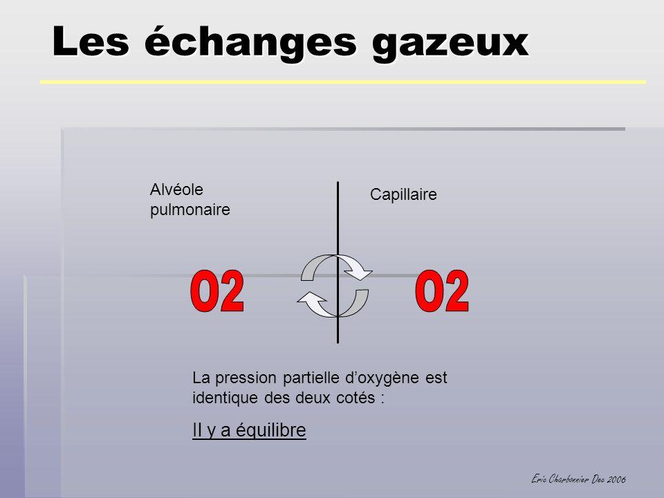 Les échanges gazeux O2 O2 Il y a équilibre Alvéole pulmonaire