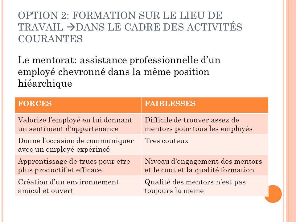 OPTION 2: FORMATION SUR LE LIEU DE TRAVAIL DANS LE CADRE DES ACTIVITÉS COURANTES