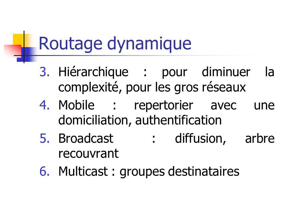 Routage dynamique Hiérarchique : pour diminuer la complexité, pour les gros réseaux. Mobile : repertorier avec une domiciliation, authentification.