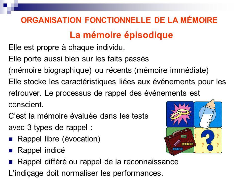 ORGANISATION FONCTIONNELLE DE LA MÉMOIRE