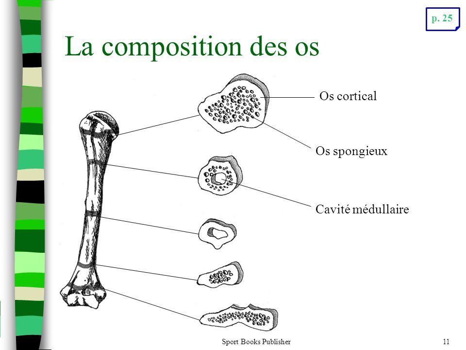 La composition des os Os cortical Os spongieux Cavité médullaire p. 25