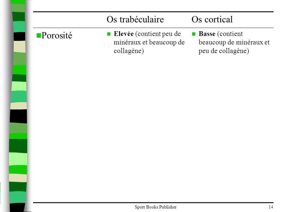Os trabéculaire Os cortical Porosité