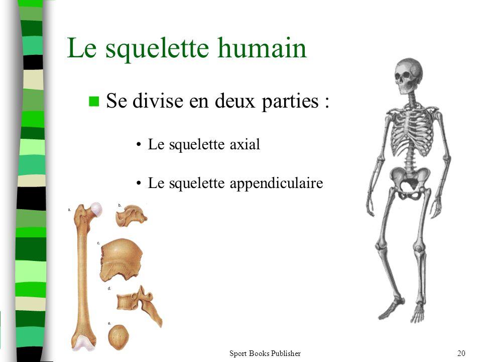 Le squelette humain Se divise en deux parties : Le squelette axial