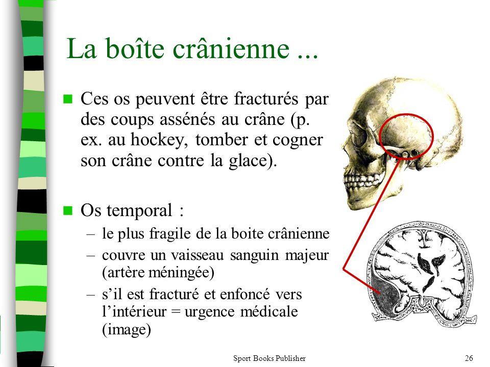 La boîte crânienne ... Ces os peuvent être fracturés par des coups assénés au crâne (p. ex. au hockey, tomber et cogner son crâne contre la glace).