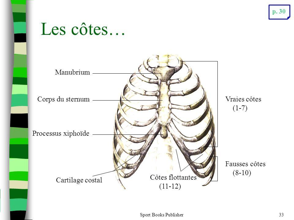 Les côtes… Manubrium Corps du sternum Vraies côtes (1-7)