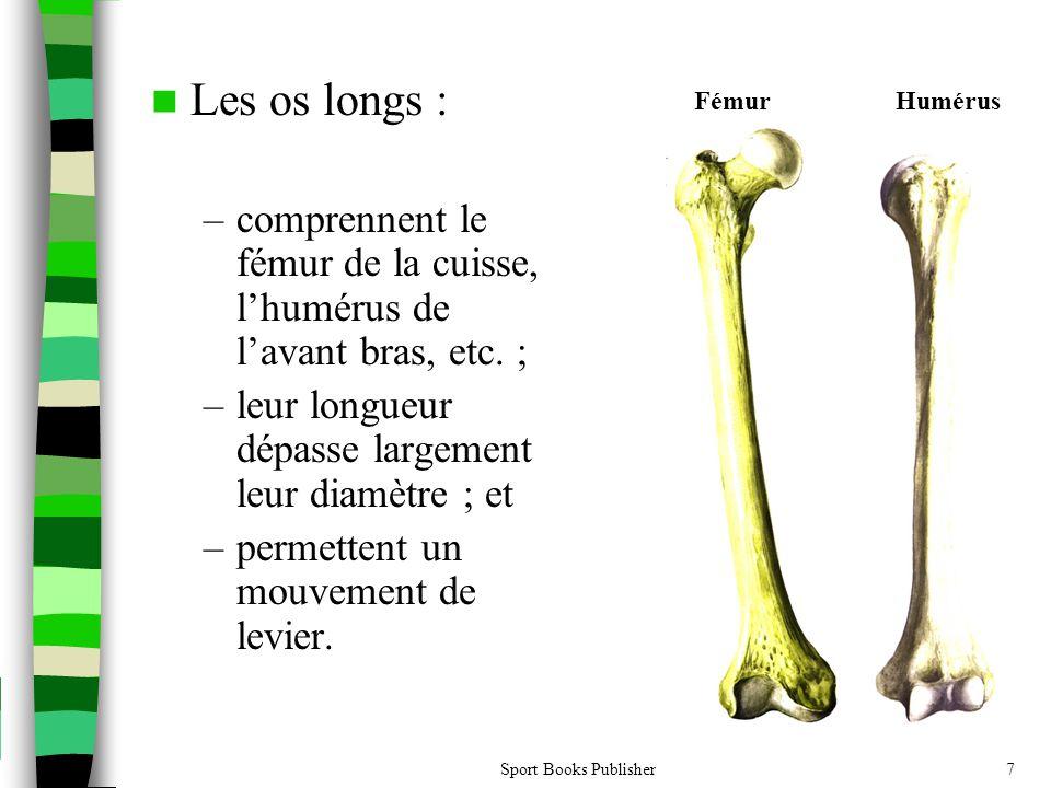 Les os longs : comprennent le fémur de la cuisse, l'humérus de l'avant bras, etc. ; leur longueur dépasse largement leur diamètre ; et.