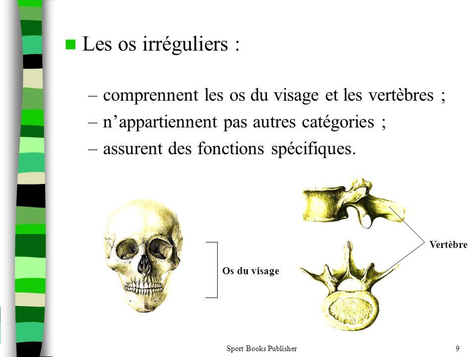 Les os irréguliers : comprennent les os du visage et les vertèbres ;
