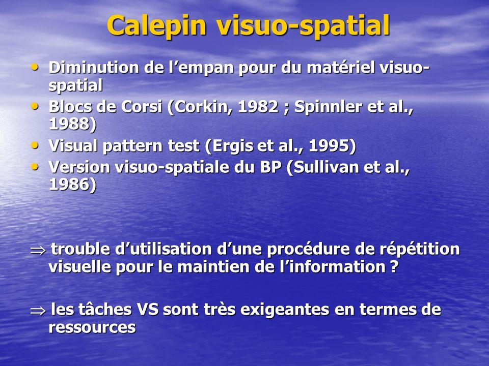 Calepin visuo-spatial