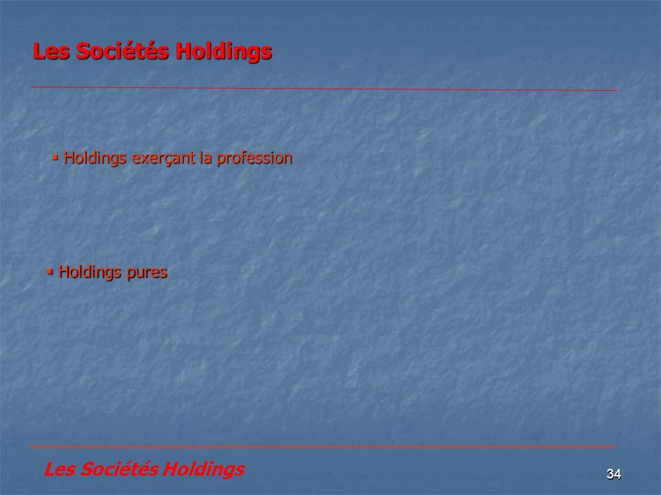 Les Sociétés Holdings Holdings exerçant la profession.  Holdings pures. __________________________________________________.