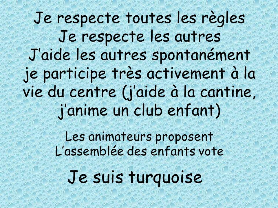 Je respecte toutes les règles Je respecte les autres J'aide les autres spontanément je participe très activement à la vie du centre (j'aide à la cantine, j'anime un club enfant)