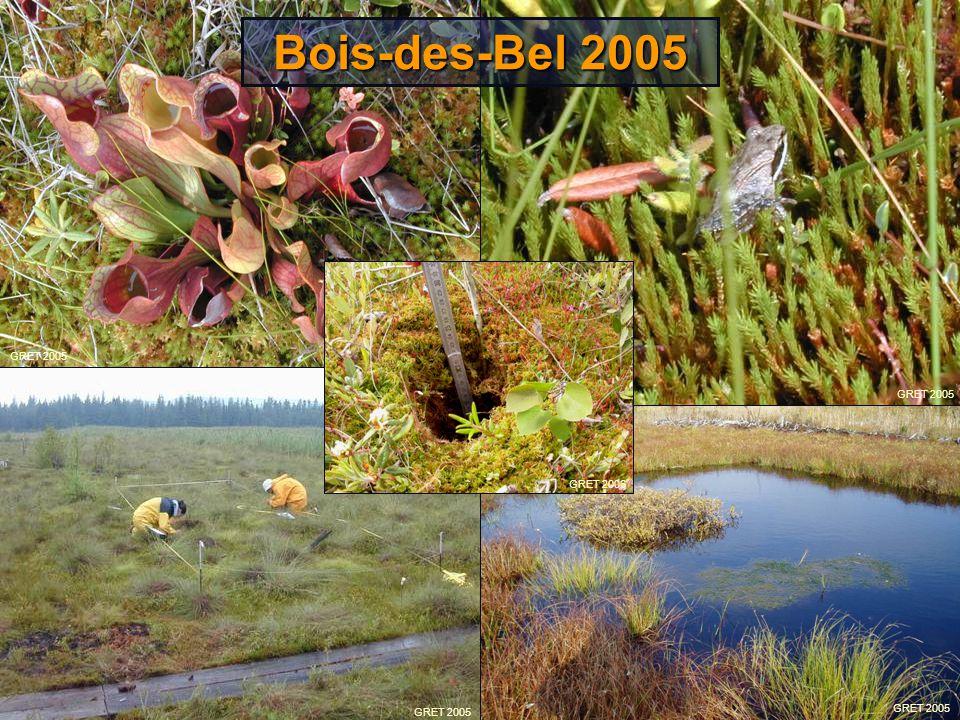 Bois-des-Bel 2005 Voici à quoi le site ressemblait après 5 ans: