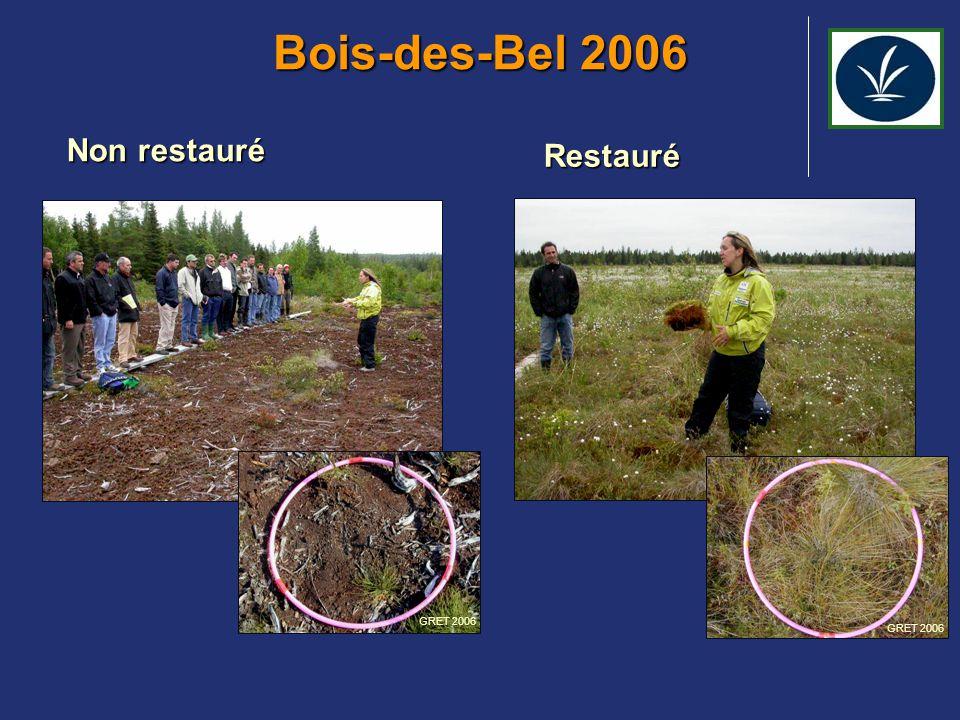Bois-des-Bel 2006 Non restauré Restauré