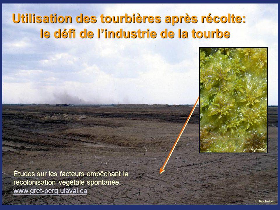 Utilisation des tourbières après récolte: