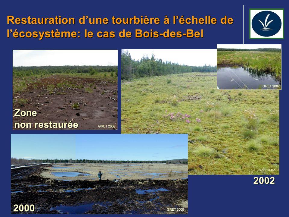 Restauration d'une tourbière à l'échelle de l'écosystème: le cas de Bois-des-Bel