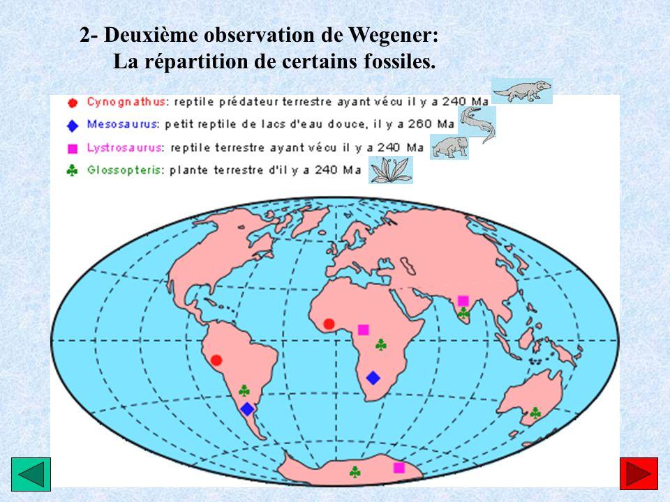 2- Deuxième observation de Wegener: