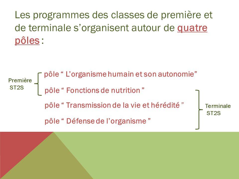 Les programmes des classes de première et de terminale s'organisent autour de quatre pôles :