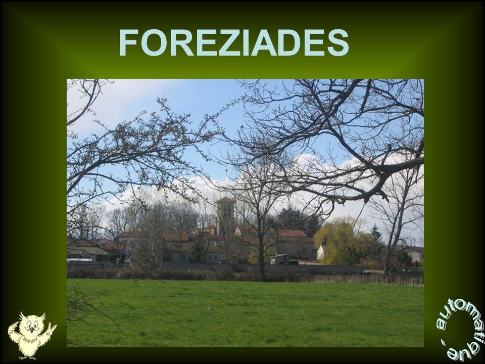 FOREZIADES automatique -