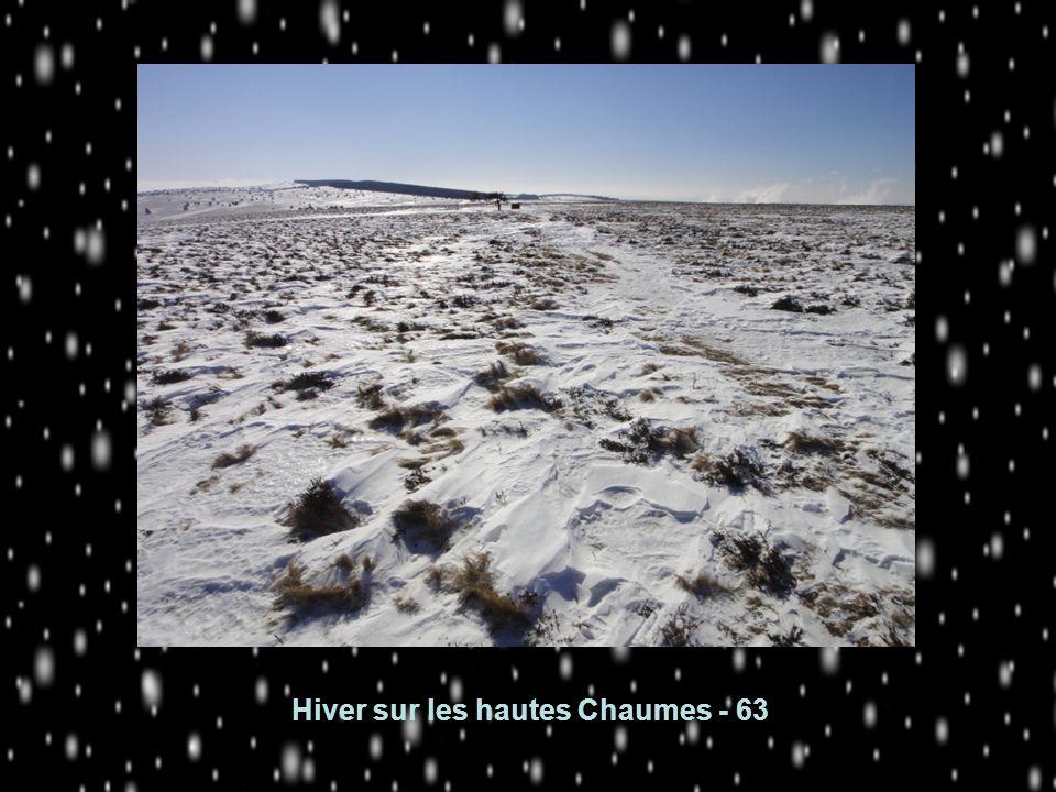 Hiver sur les hautes Chaumes - 63