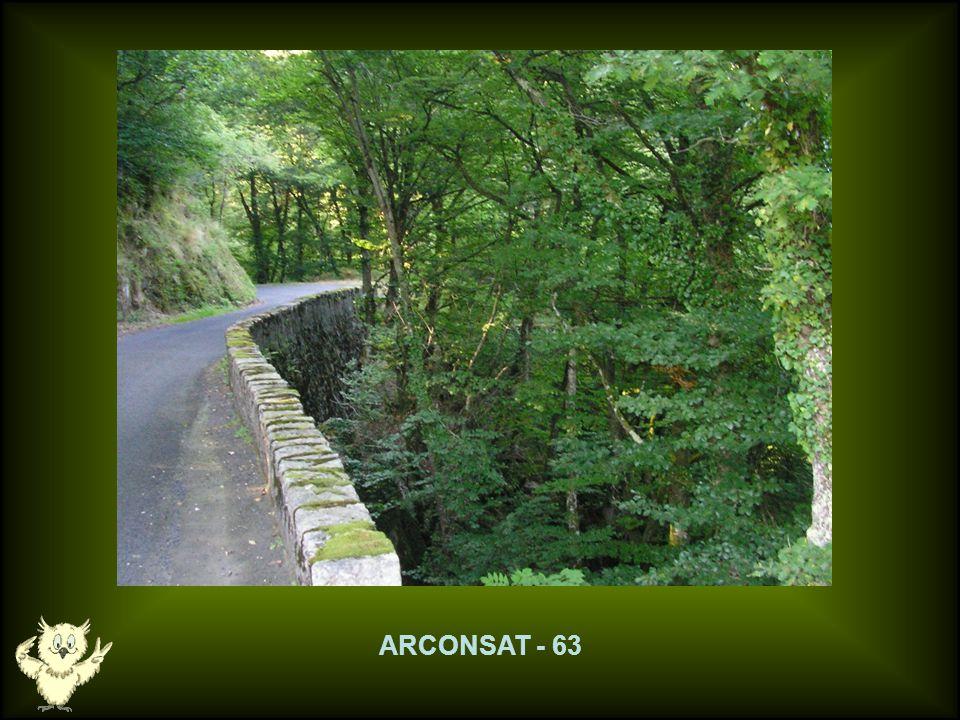 ARCONSAT - 63