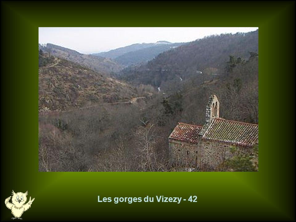 Les gorges du Vizezy - 42
