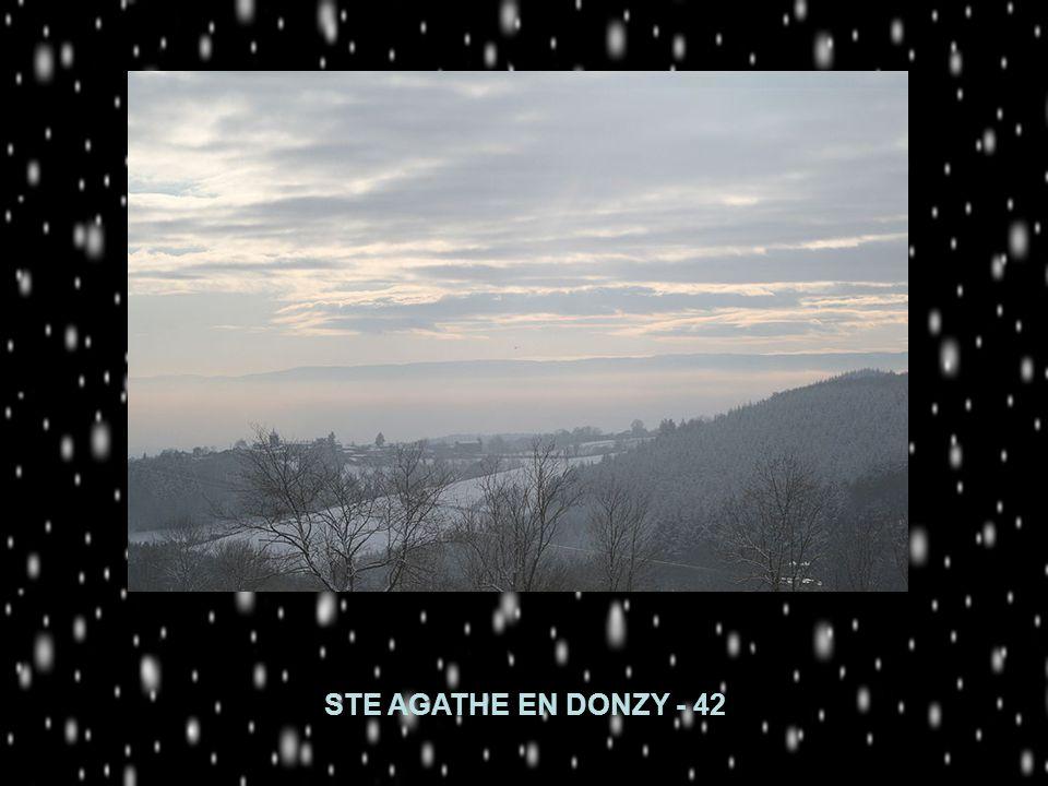 STE AGATHE EN DONZY - 42