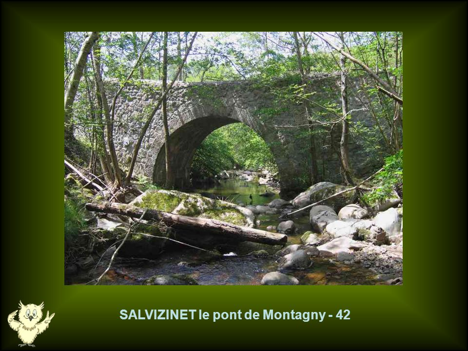 SALVIZINET le pont de Montagny - 42