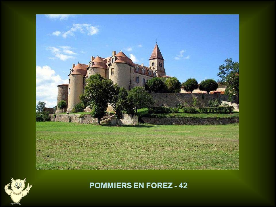POMMIERS EN FOREZ - 42