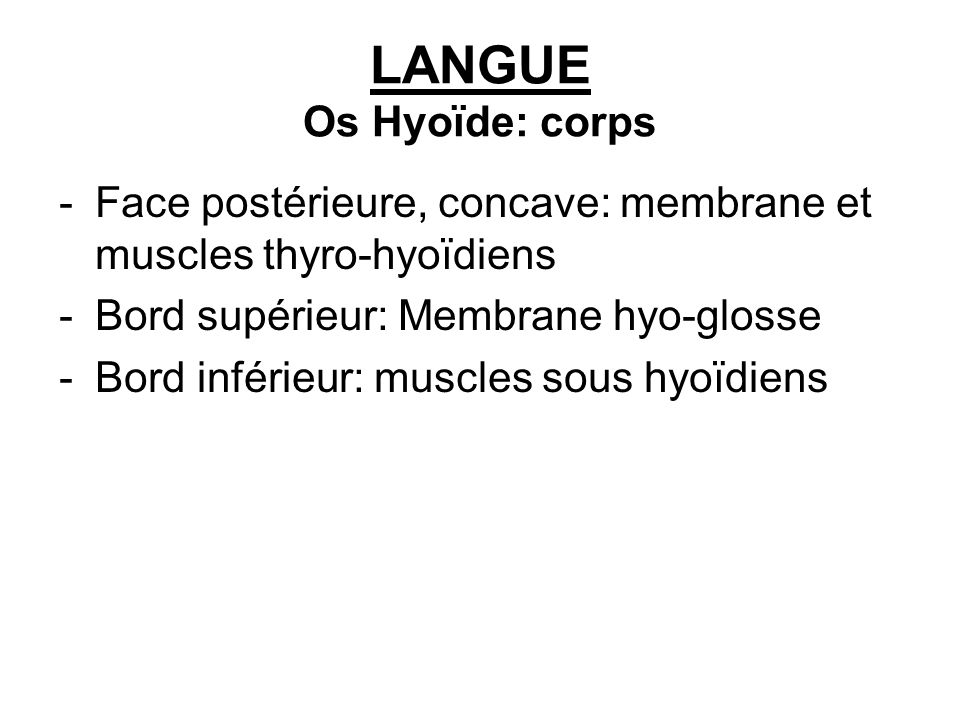 LANGUE Os Hyoïde: corps