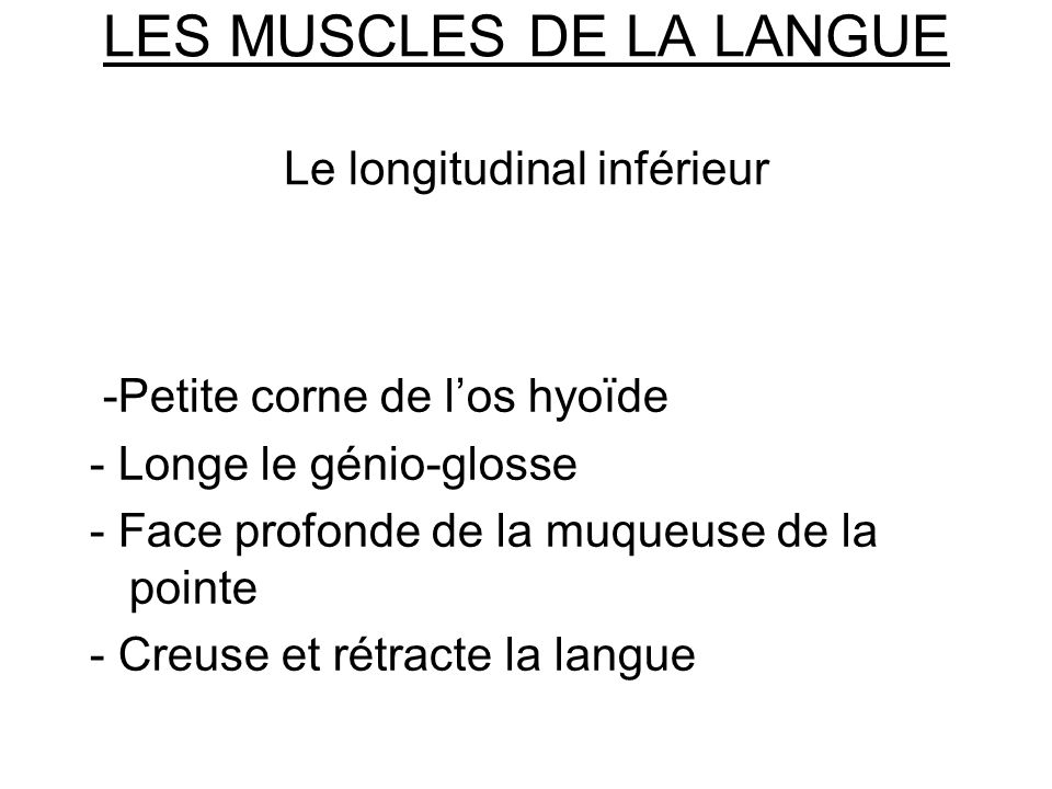 LES MUSCLES DE LA LANGUE Le longitudinal inférieur